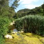 Parc natural Sant Llorenç del Munt