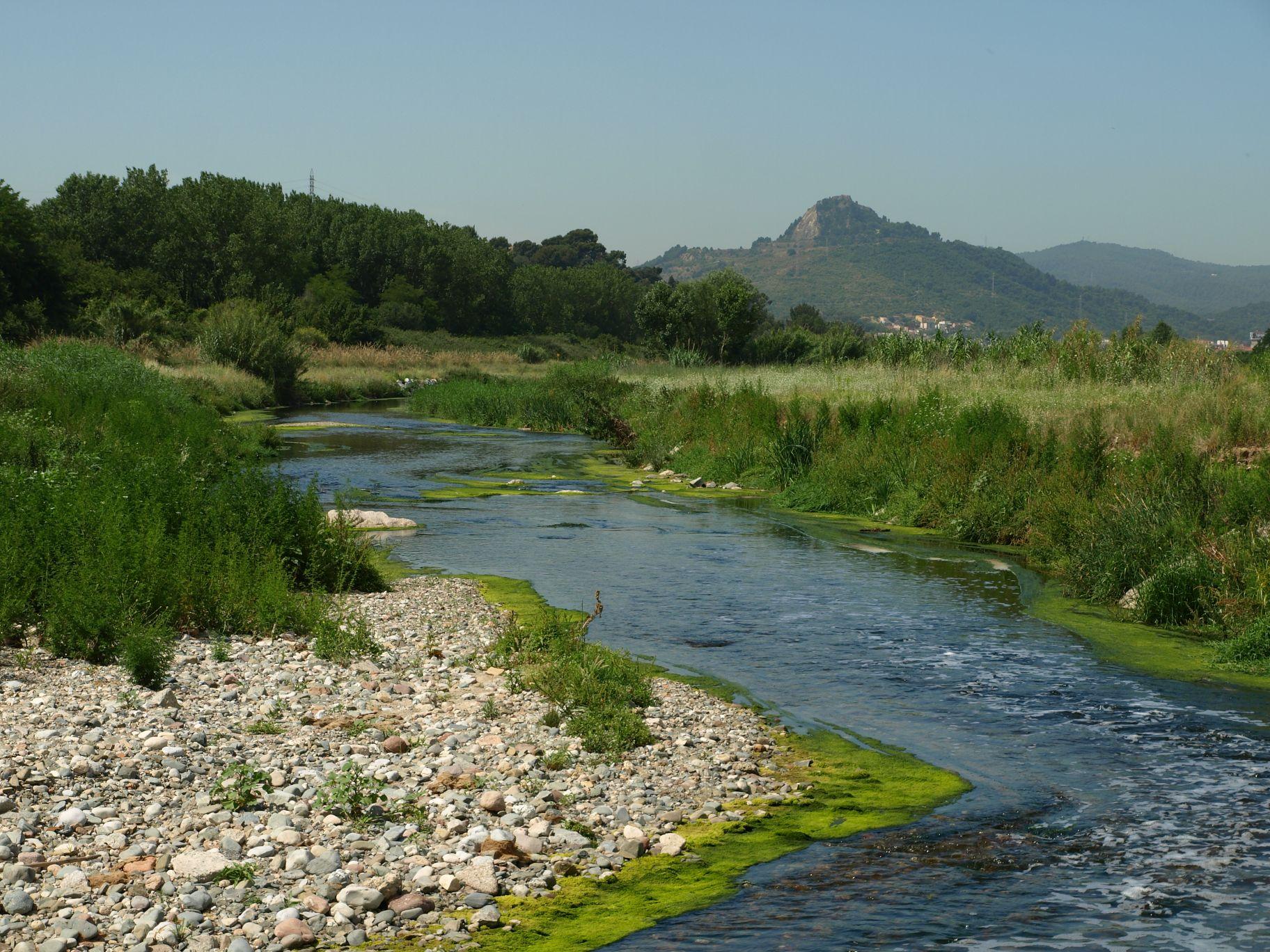 Riu Besòs la Llagosta Sant Fost