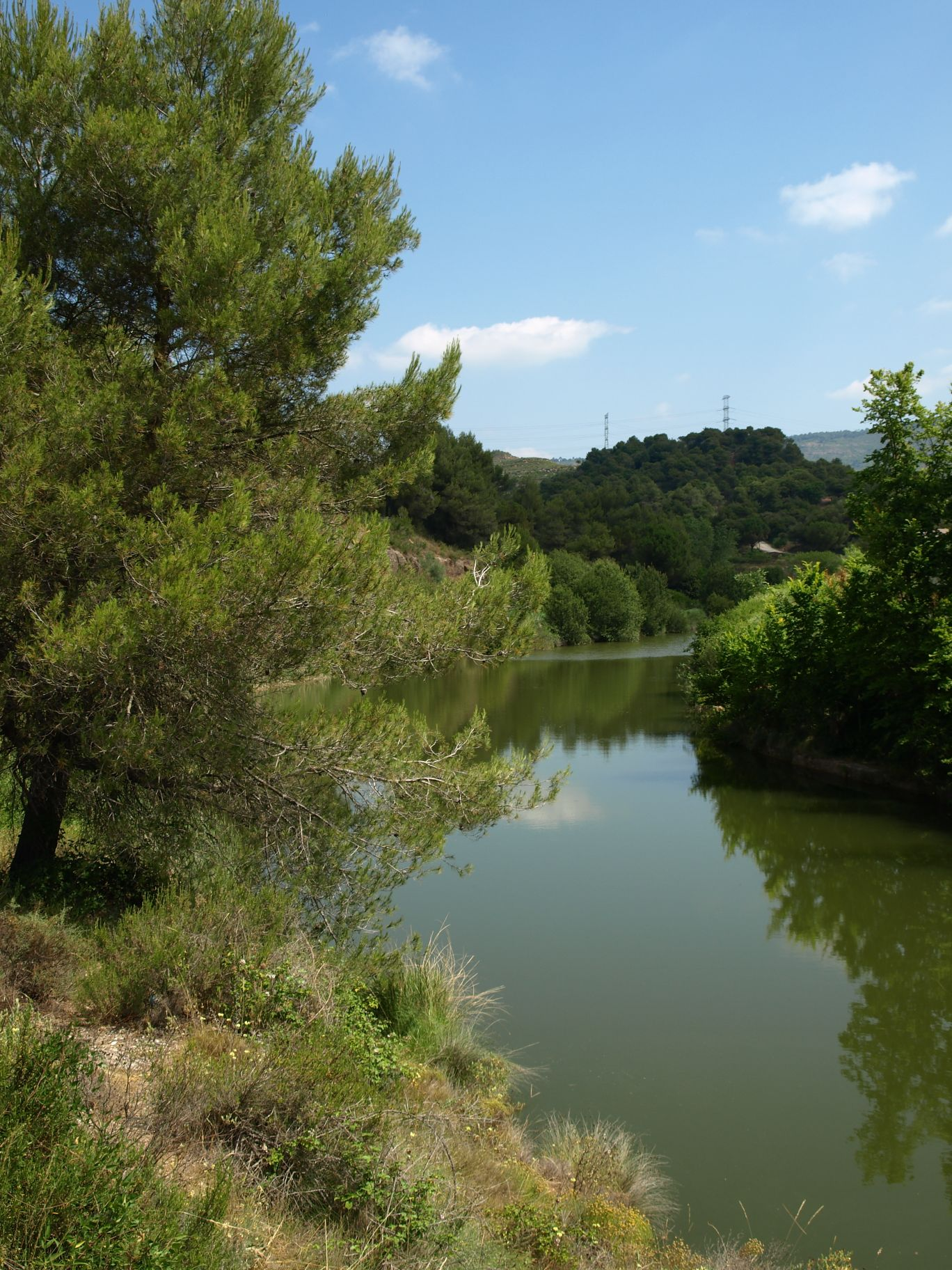 Riu Ripoll Sant Llorenç Savall