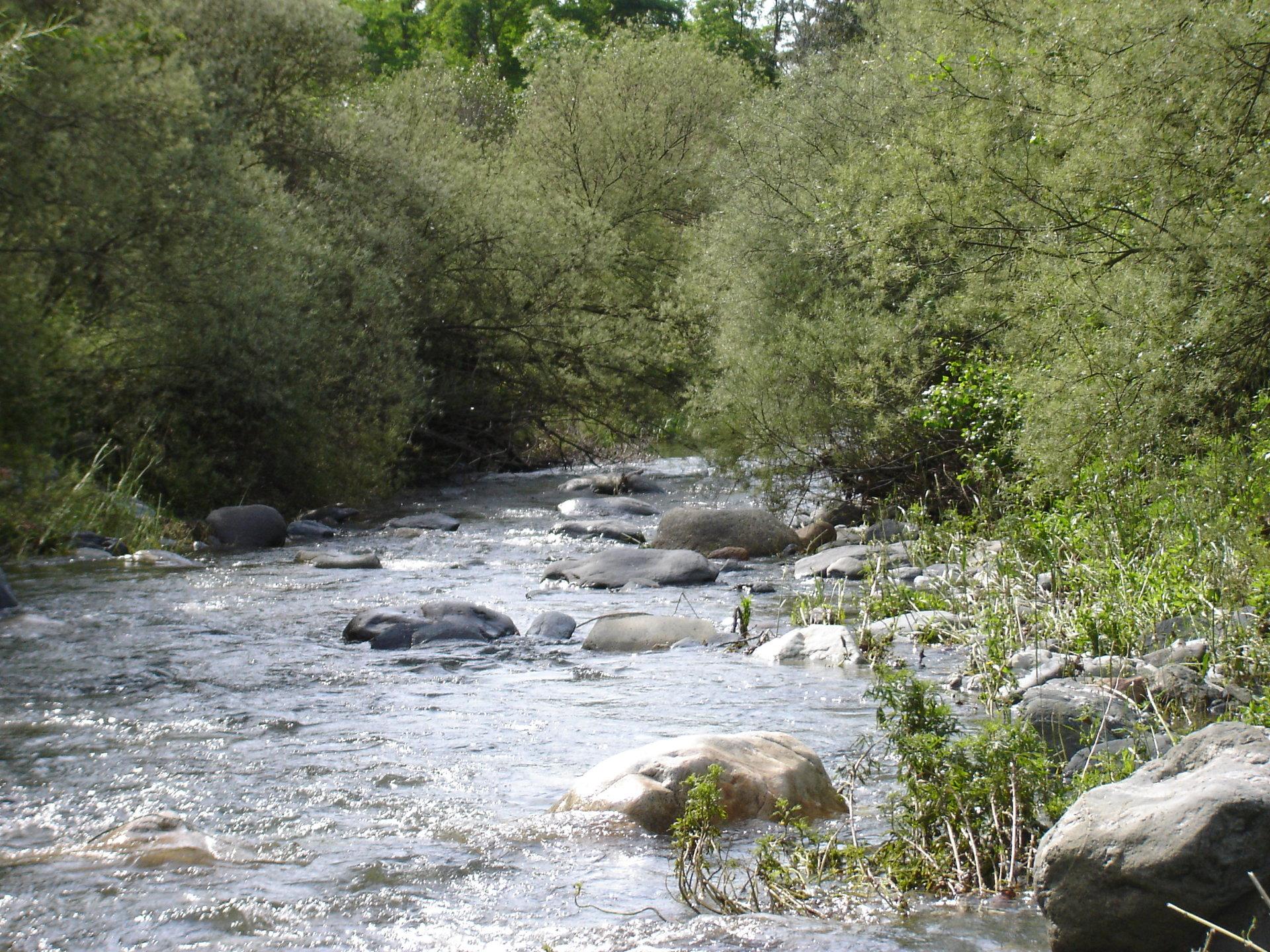 Tordera - Sargar inici curs mitjà plana Palautordera