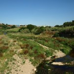 Riu Ripoll Barbera del Valles
