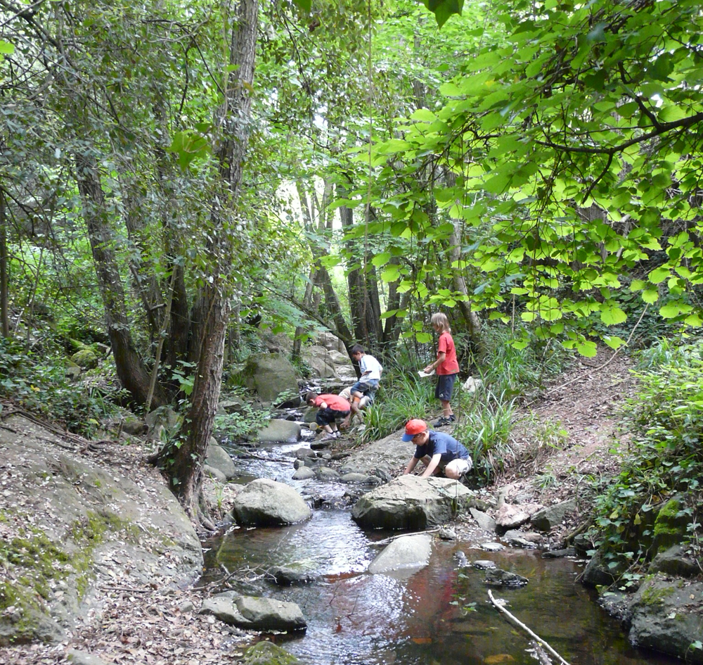 descobreix el riu2